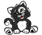 cute cat.png