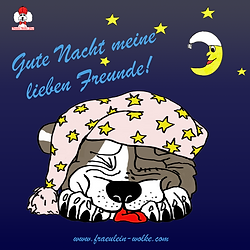 Gute Nacht080120.png