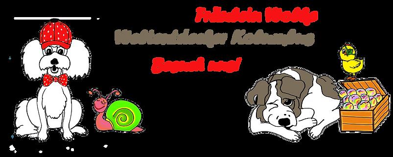 Webseite_Werbung_Fräulein_Wolkes_Shop.p