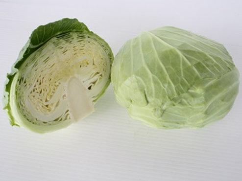 Cabbage (กะหล่ำปลี)