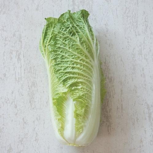 Chinese Cabbage Michilli (ผักกาดหางหงษ์)
