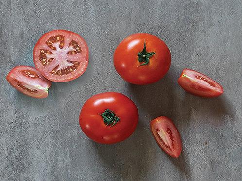 Royal Project Tomato (มะเขือเทศโครงการหลวง)