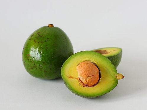 Avocado Peterson (อะโวคาโด พันธุ์ปีเตอร์สัน)