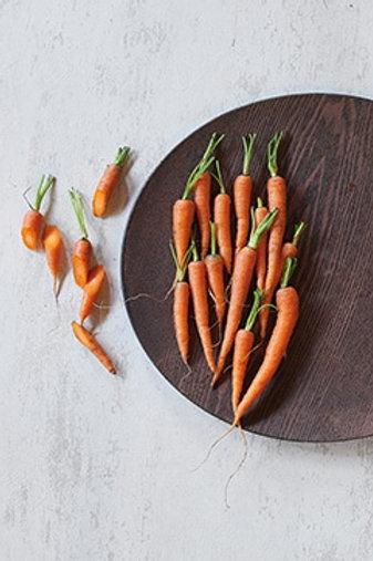 Baby Carrot (เบบี้แครอท)