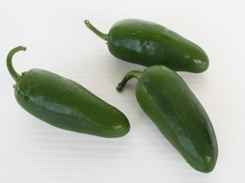 Mexican Chili / Jalapeno (พริกเม็กซิกัน)