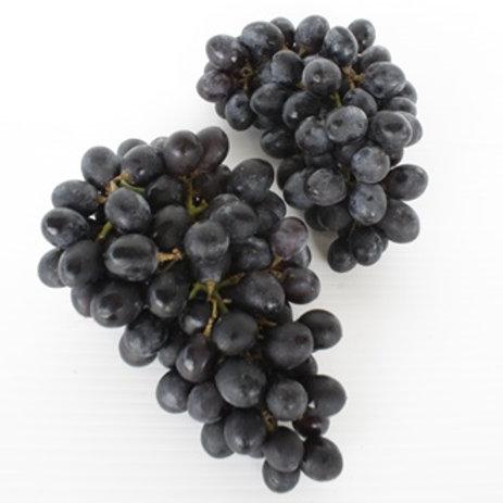 Grape Black Seedless (องุ่นดำไร้เมล็ด)