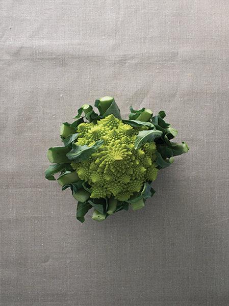 Romanesco Cauliflower (กะหล่ำดอกโรมาเนสโก)