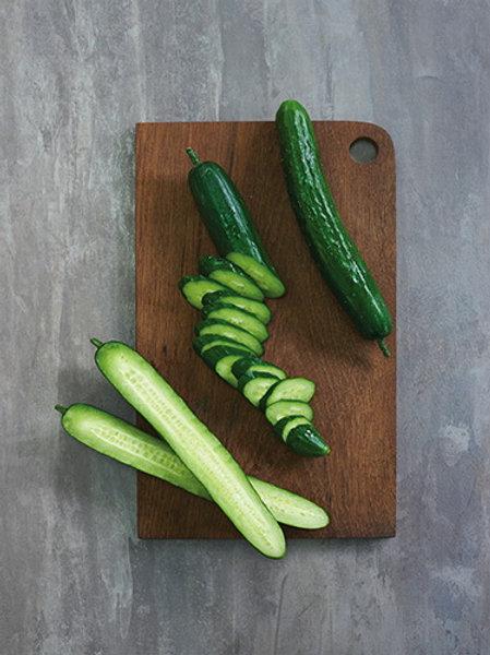 Japanese Cucumber (แตงกวาญี่ปุ่น)