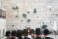 Black Hats at the Wall #1