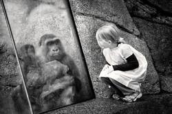 Little Girl and Gorilla