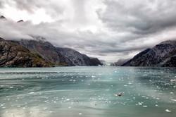 Hopkins Glaciar (Wide)