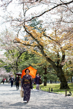 Kyoto Old Woman with Umbrella Wide