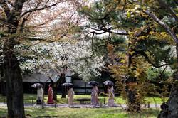 Kyoto Umbrella Women