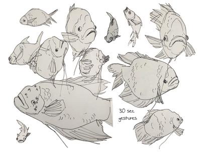 Fish Gestures