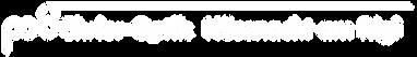 Ehrler-Optik Logo