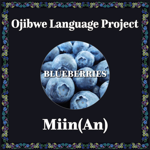 Ojibwe blueberry.jpg