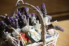 lavender-1902943_640.jpg