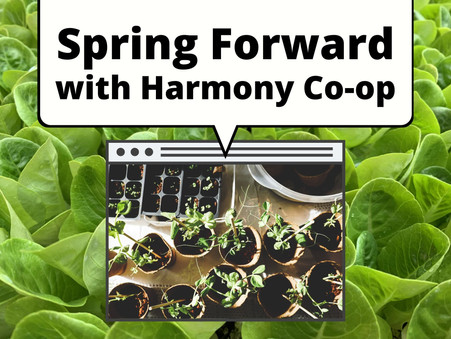 Spring Forward with Harmony Co-op