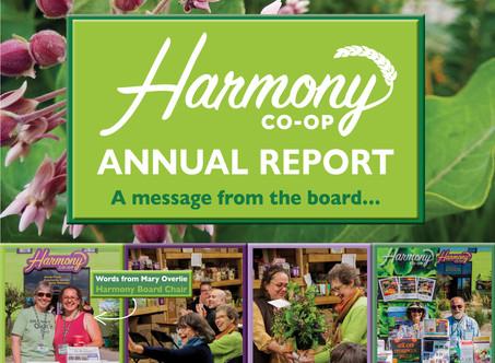 2019 Harmony Annual Report