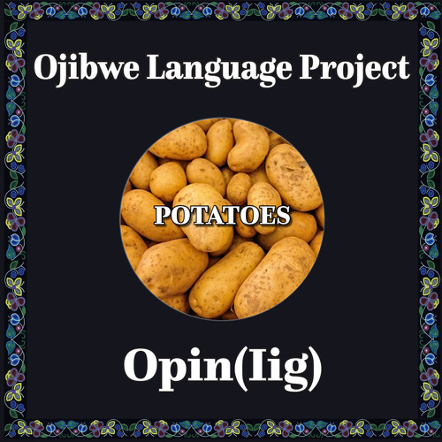 Ojibwe potato.jpg
