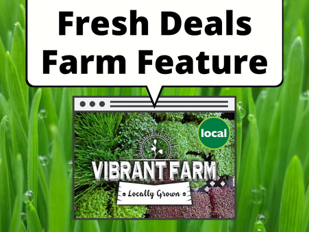 Fresh Deals Farm Feature: Vibrant Farm