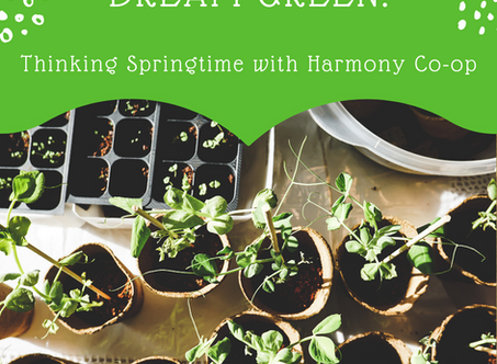Dream Green: Thinking Springtime with Harmony Co-op