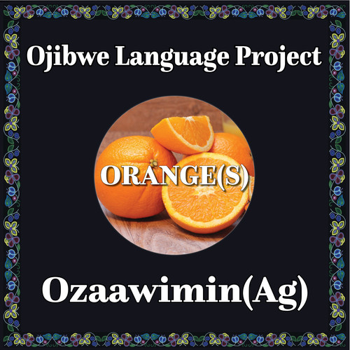 Ojibwe orange.jpg