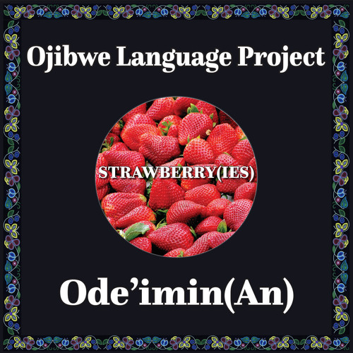 Ojibwe strawberry.jpg