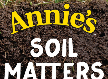 How soil can reverse climate change