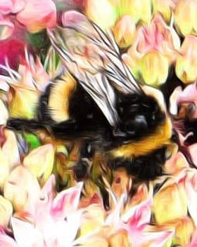 Panel 255px - If Bees.jpg
