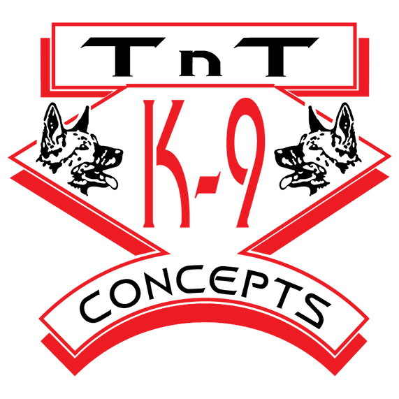 Logo_TnT_Web.png