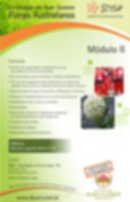 News curso florais 2013 -  Modulo II (1)
