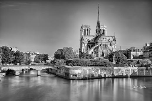 Pont de l'Archevêché Notre Dame #1