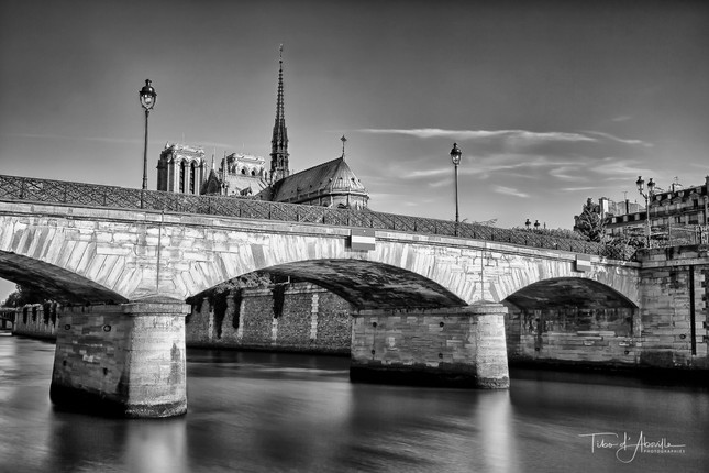 Pont de l'Archevêché #6