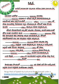 Telugu Part of Speech Exercise