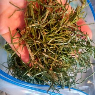 野草茶。毎年摘んでいます。