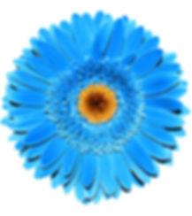 AdobeStock_188449757.jpeg