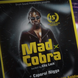 Mad Cobra / 15th DSS anniversary