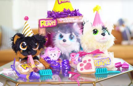 YouTubers & Petfluencers Celebrate Adoption Day
