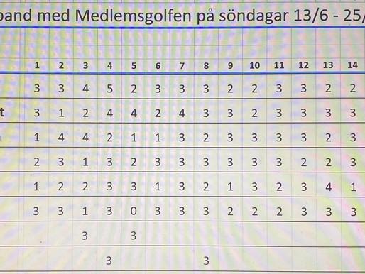 Eclectic Medlemsgolfen 13/6 - 25/7 Finalspelet 1/8