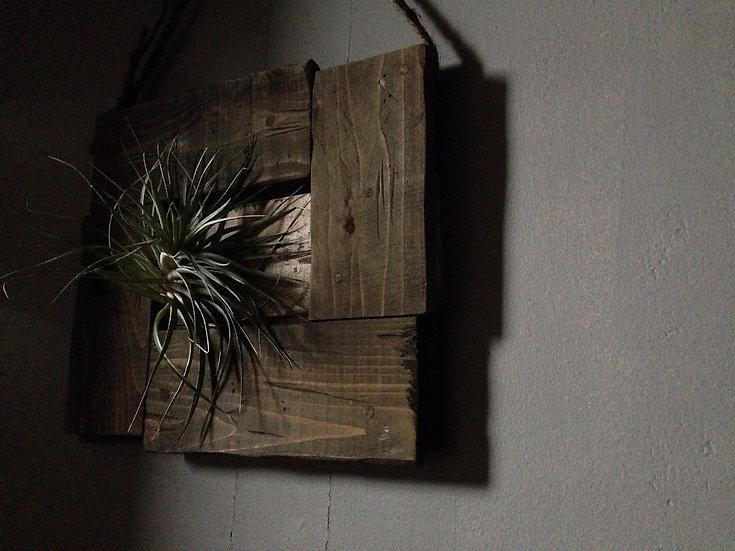 植物を飾るウッドフレーム