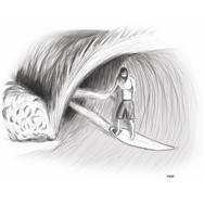 Surfer Barelled