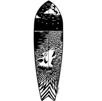Fish Surfboard Design