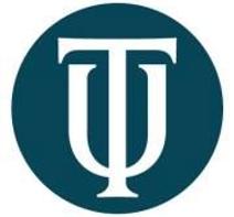 Touro Logo.png
