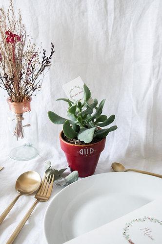 Pot en terre cuite rose bohème-chic - Cadeau invité mariage