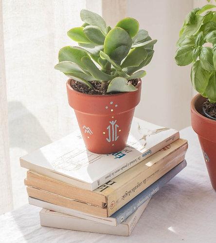 PISE - Petit pot de fleur en terre cuite terracotta