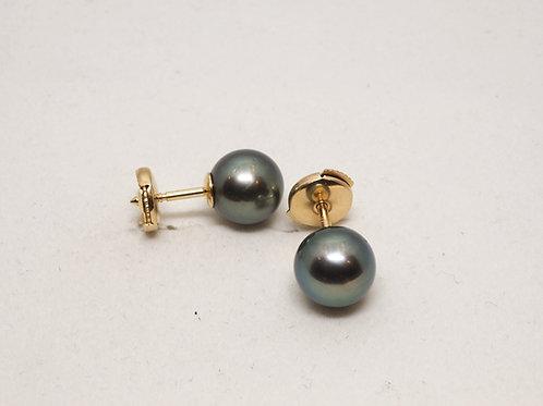 boucles d'oreilles puce perles de tahiti