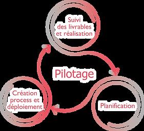 2019_-_compétences_pilotage.png