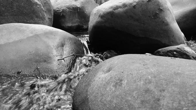 Clarice Shriver // Monotone Landscape
