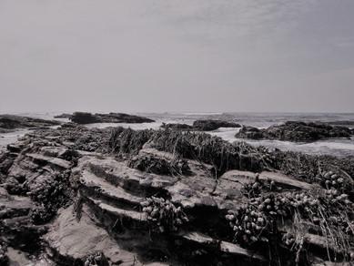 Reyanne Canete // Monotone Landscape
